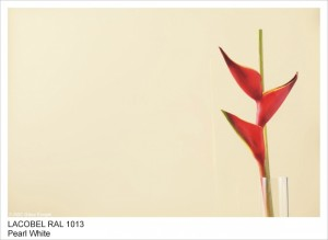 RAL1013 PEARL WHITE
