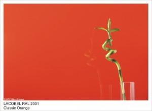 RAL2001 CLASSIC ORANGE