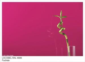 RAL4006 FUCHSIA