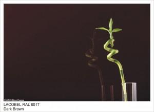 RAL8017 DARK BROWN