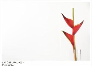 RAL9003 PURE WHITE