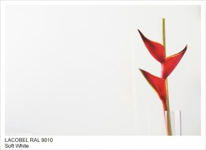 RAL9010 DELICATE WHITE
