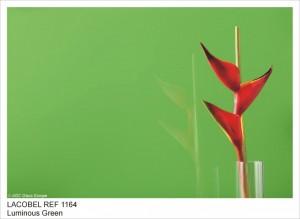 REF1164 SHINING GREEN