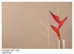 REF1236 LIGHT BROWN